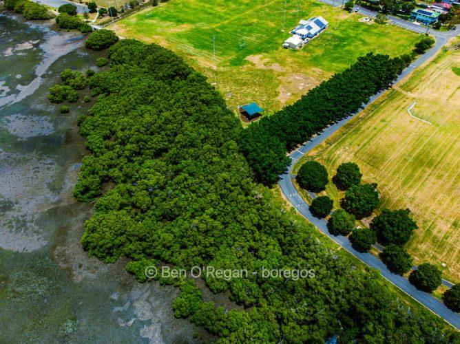 Elanora Park, Wynnum - Aerial photo